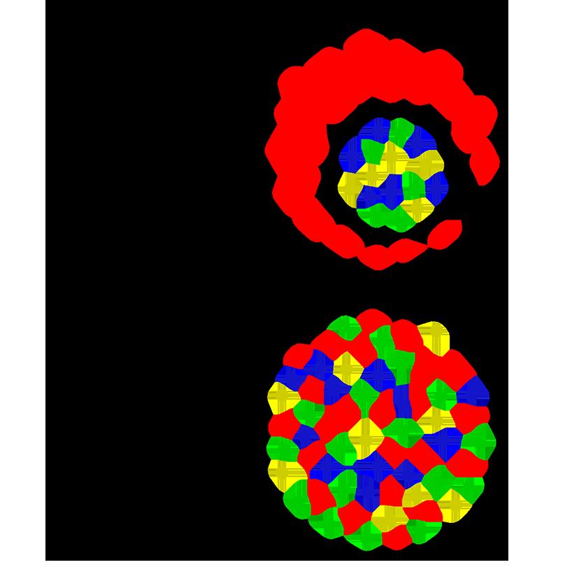 Unterschied Integration und Inklusion